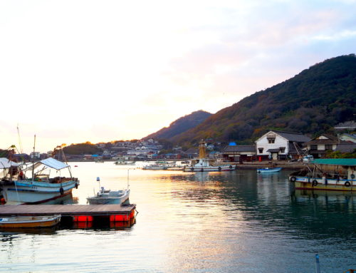Tomonoura Historic Route: Visiting the Port of Shiomachi and Spectacular Vista Points